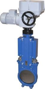 MO 3+gate valve